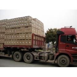 广州到南阳全境物流运输专线